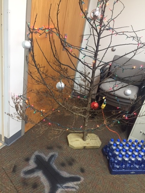 Burnt up Christmas tree and cat